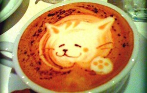 Kitty coffee foam